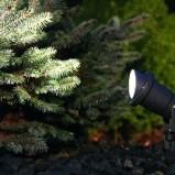 Oświetlenie ogrodowe – jak rozświetlić ogród?