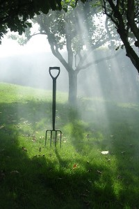 ścieżki w ogrodzie jak wytyczyć
