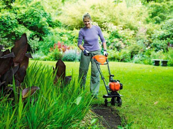 glebogryzarka, gleba, ogród