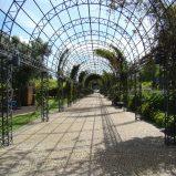 Jak powinien wyglądać nowoczesny ogród?