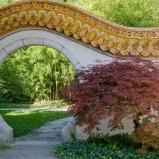 Łagodne ścieżki feng shui