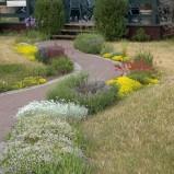 Dlaczego w niektórych ogrodach wytycza się kręte ścieżki?