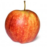 Popularne odmiany jabłek