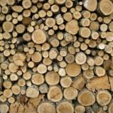 Jak trzymać i suszyć drewno opałowe?