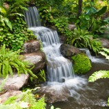 Piękny i efektowny ogród