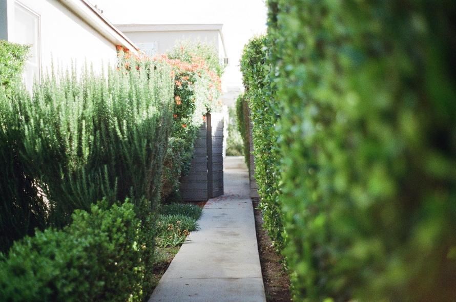 garden-way-large